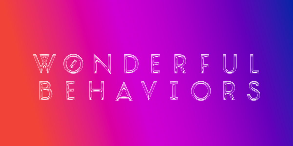 2017 Thesis Festival: Wonderful Behaviors